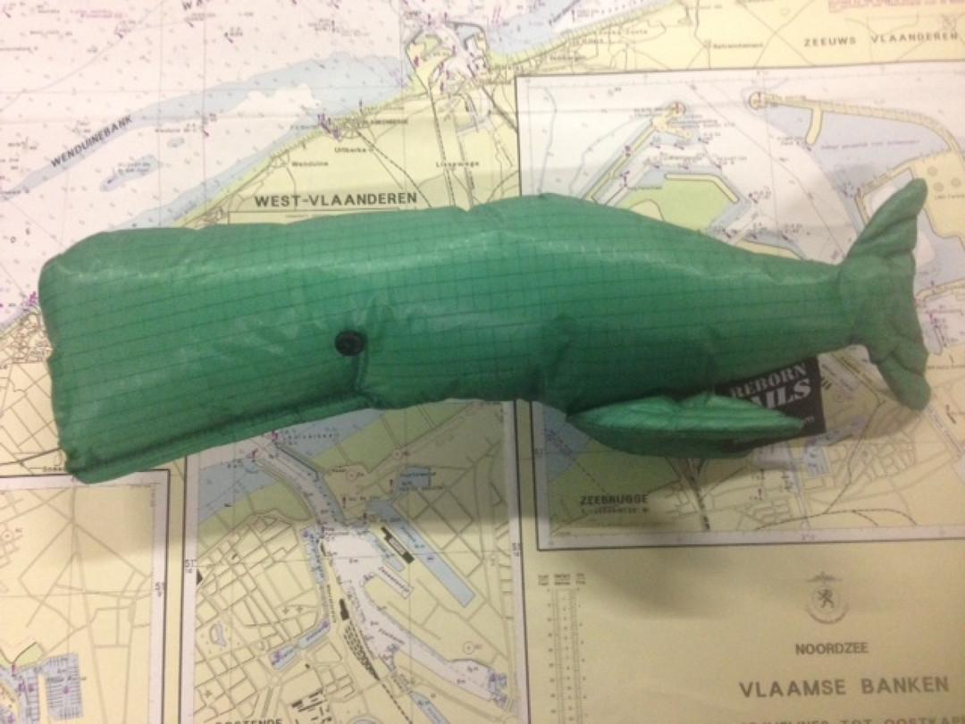 Walvis in spinnaker stof groen - Shopping De Panne